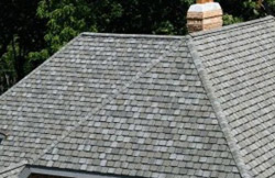 shingle-roof-1