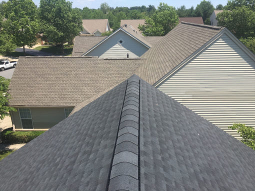 GAF 50 Year Architectural Shingle